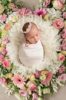 新生儿黄疸预防与护理