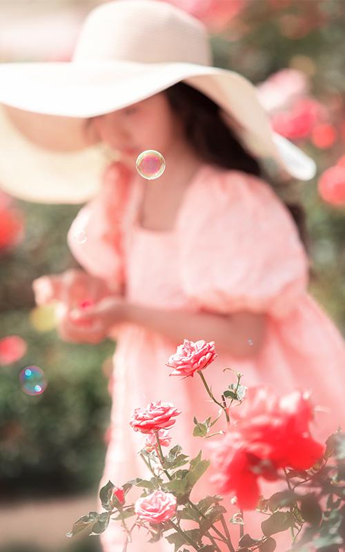 芳妮豆丁儿童摄影 玫瑰庄园